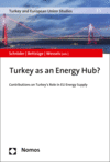 Mirja Schröder, Marc Oliver Bettzüge, Wolfgang Wessels - Turkey as an Energy Hub?